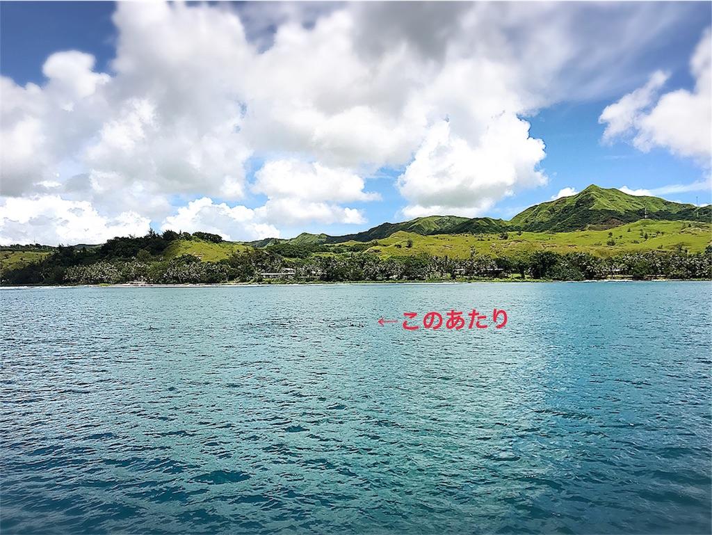 f:id:dietseikoubanzai:20170921031220j:image
