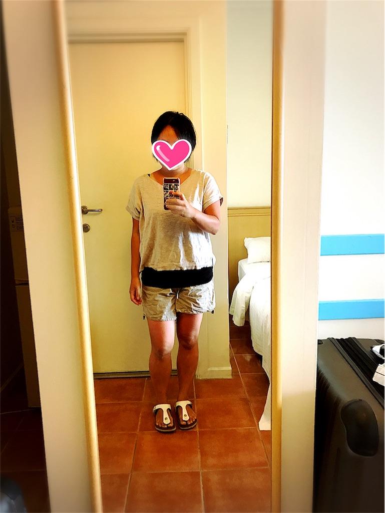 f:id:dietseikoubanzai:20171004125047j:image