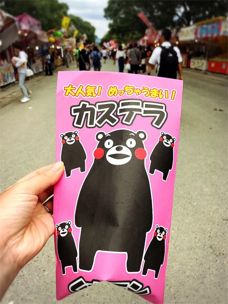 f:id:dietseikoubanzai:20171008103524j:image