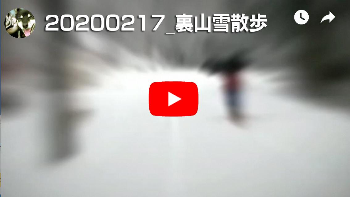 f:id:digi-wow:20200222193014j:plain