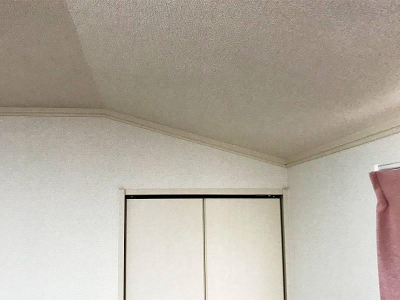 母屋下がりの天井