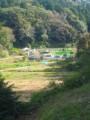 f:id:digo:20111112125813j:image:medium