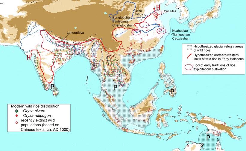 イネ起源種分布推定地図