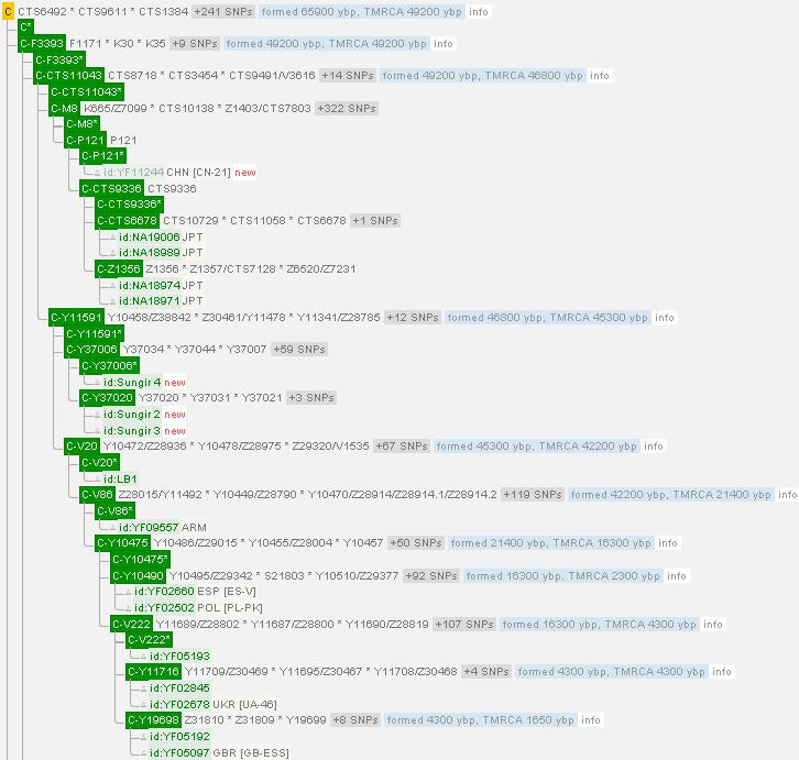 yfull_C分岐図の一部20171117
