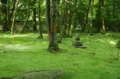 秋篠寺(奈良)
