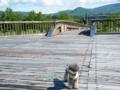 2010-06-29