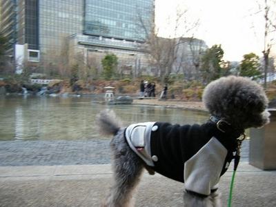 2011-02-10