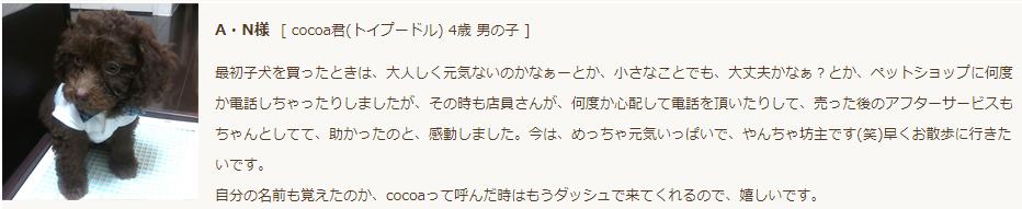 ペッツファースト(ほっとサポート)評判・口コミ