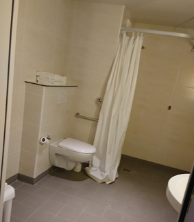 B&B Hotel Torcyのバス・トイレ
