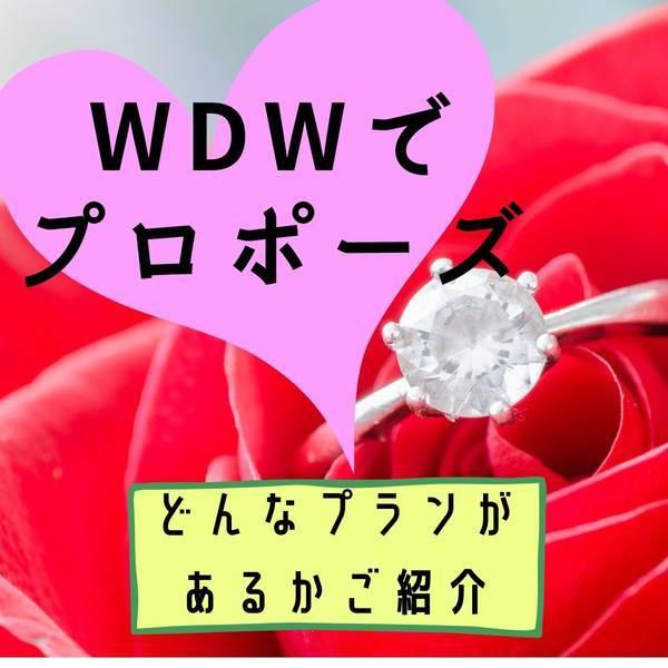 WDWでプロポーズ