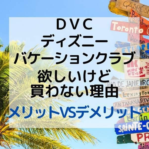 私がDVCを購入しない理由
