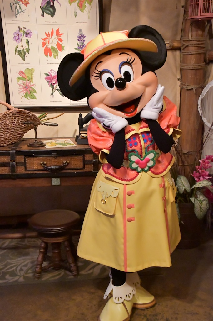f:id:disneyresort1118mickeymouse:20190311202034j:plain