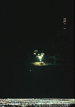f:id:diveseaforest:20190402165504j:plain