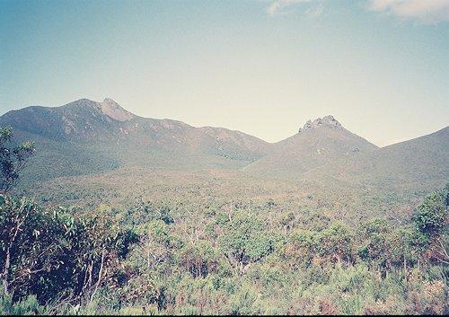 f:id:diveseaforest:20190402192814j:plain