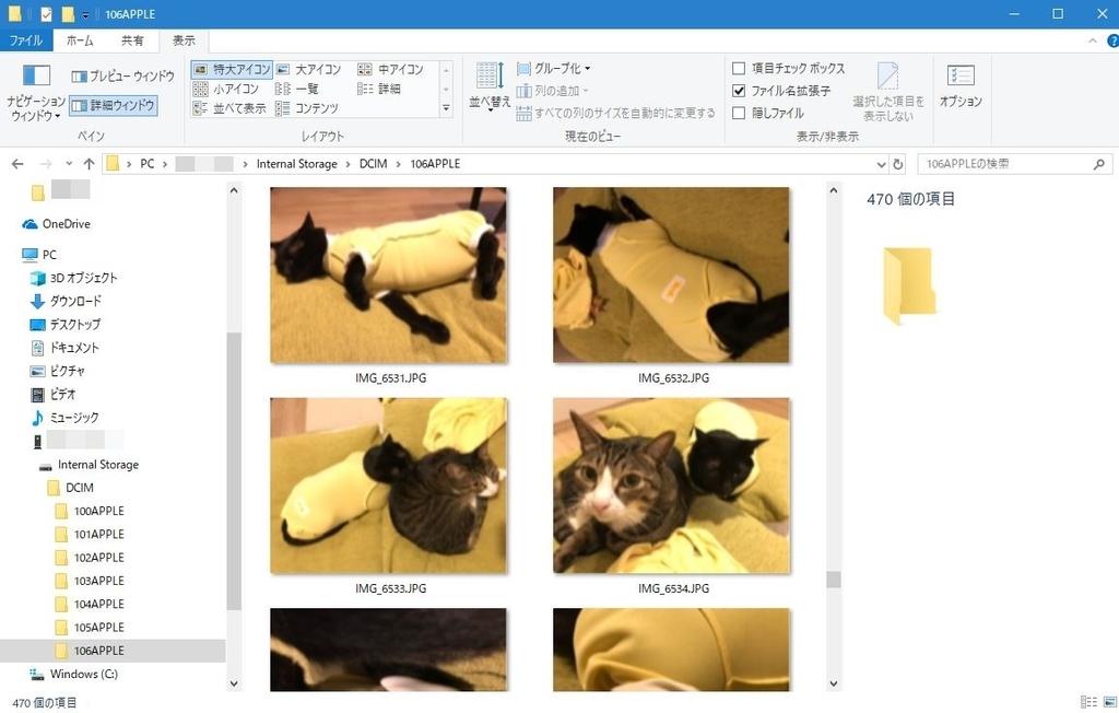 HIECの画像をWindowsで表示