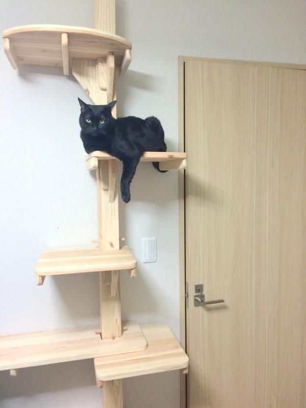天然杉の木製キャットタワー『杉にゃんキャットタワー』