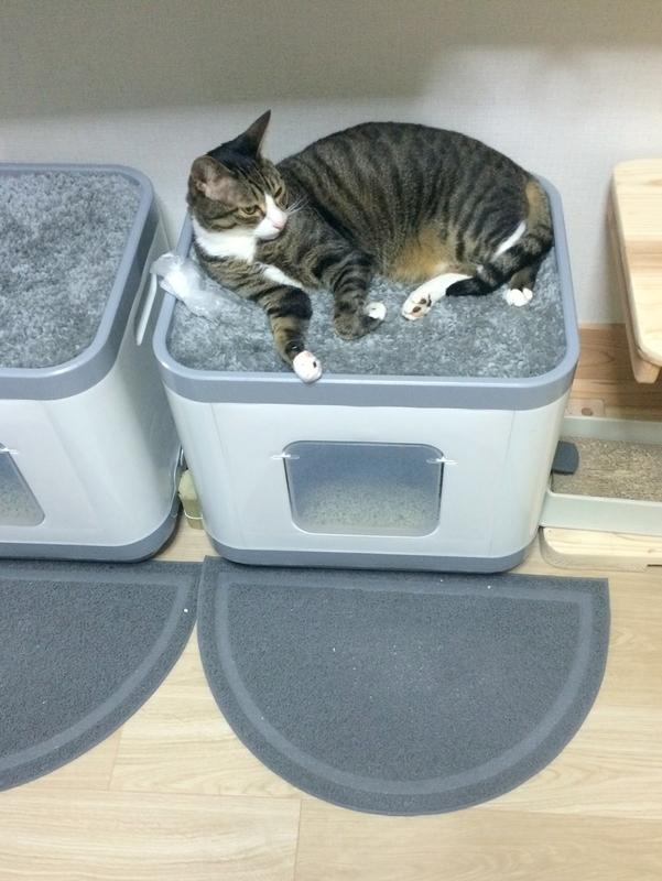 猫トイレ『キャットリッターボックスキューブ2』