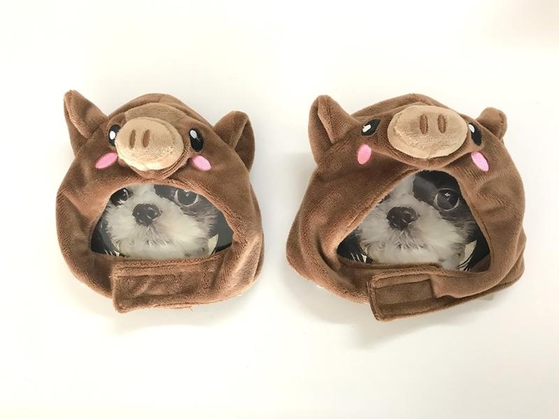 3COINS・猪のかぶりもの