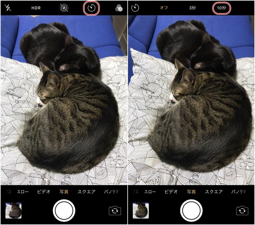 自分で証明写真を作成する方法