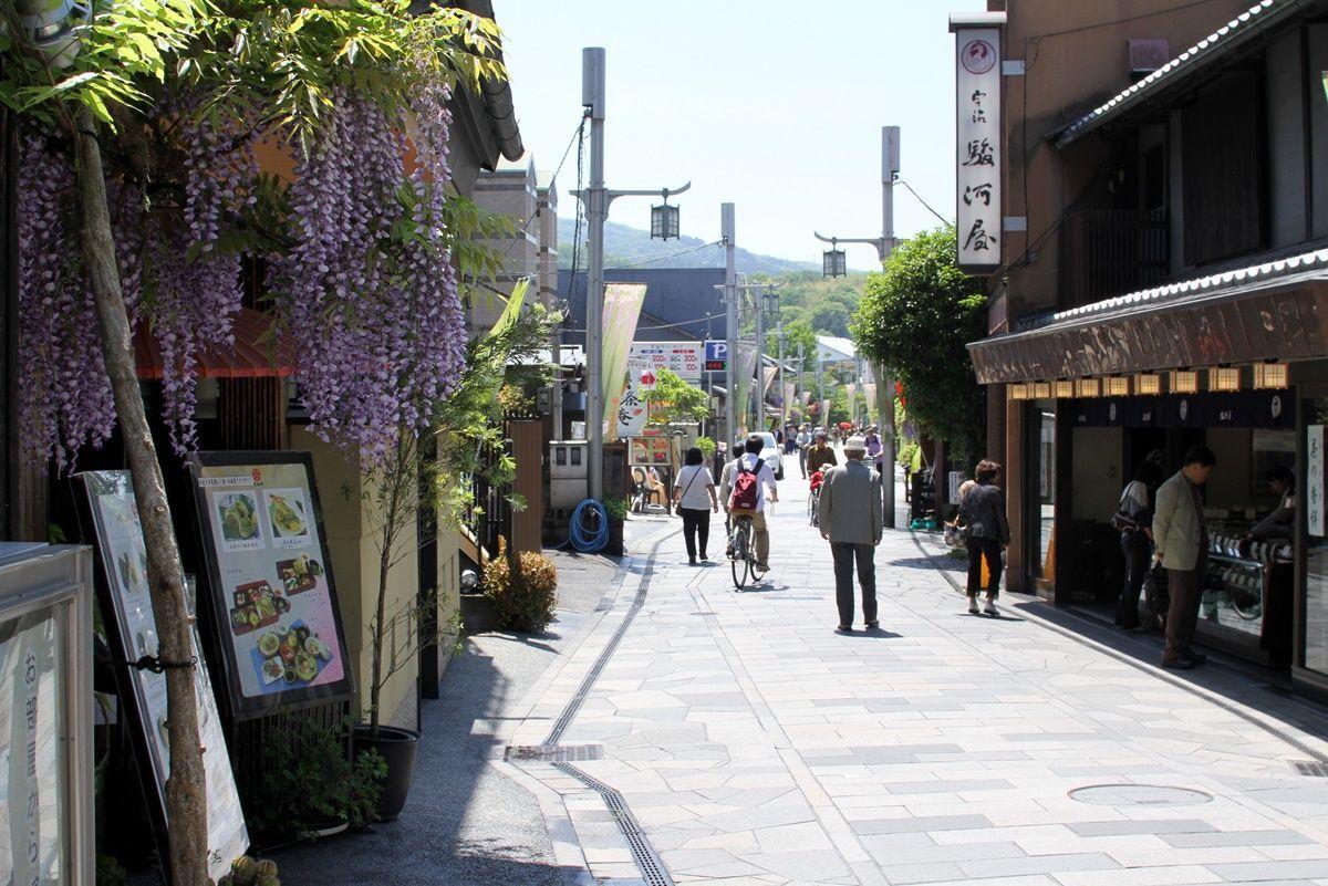 【京都・宇治】平等院の藤棚を眺める!藤の見頃は4月下旬1