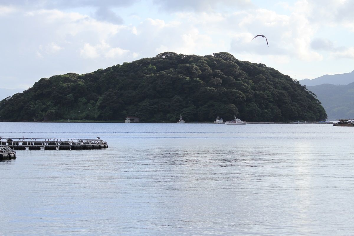 【京都・伊根町】伝統の『伊根の舟屋』を眺める