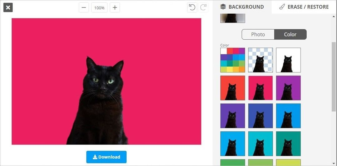 【WEBツール】自動で写真の人物だけを切り抜く『removebg』で猫を切り抜く!