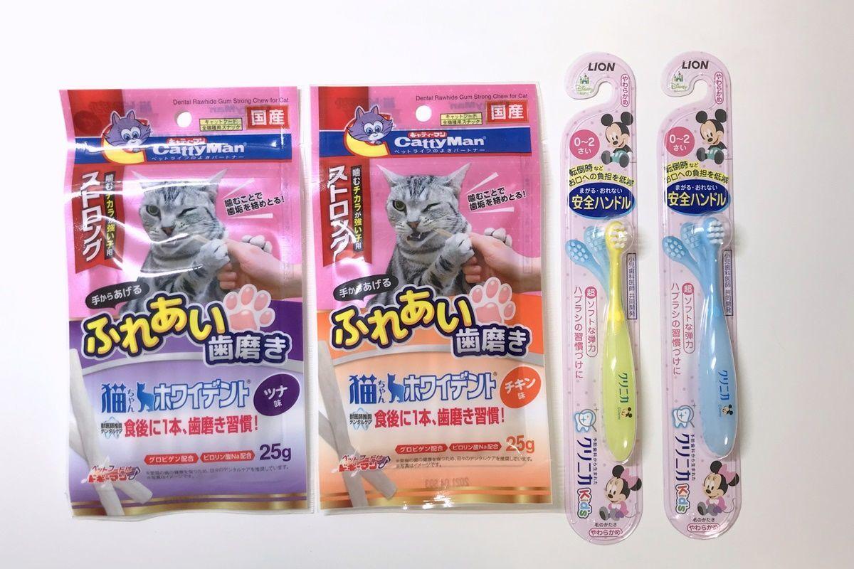 猫の歯みがきグッズその2!歯周病・歯槽膿漏予防