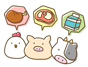 色々な動物の肉