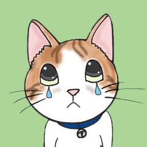 泣く茶白猫