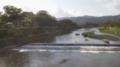 賀茂川の木漏れ日