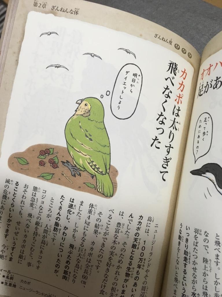 f:id:dobokutanuki:20170925211834j:plain