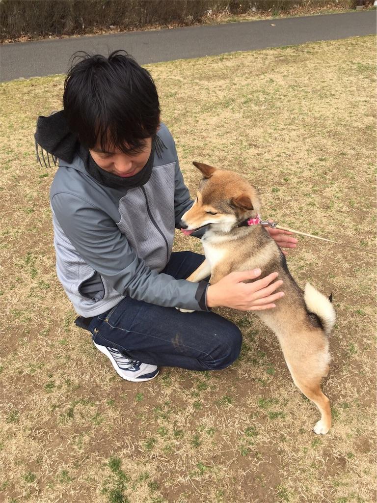 f:id:dog_hokulani:20170224165807j:image