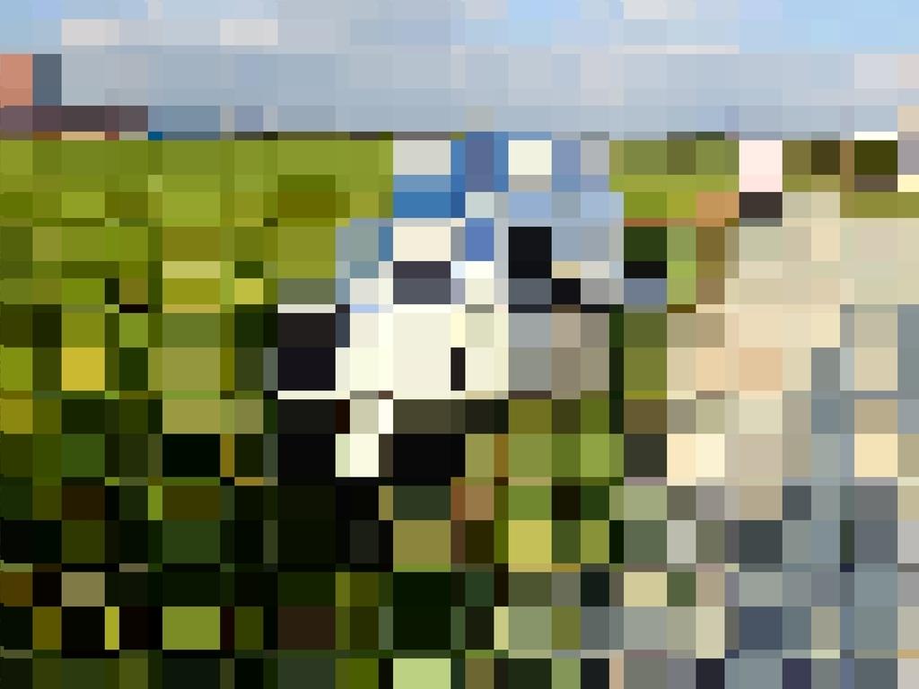 f:id:dogane:20190213000149j:plain