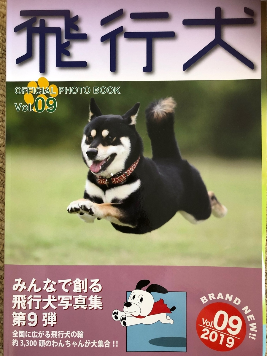 f:id:dogforest:20190502161549j:plain