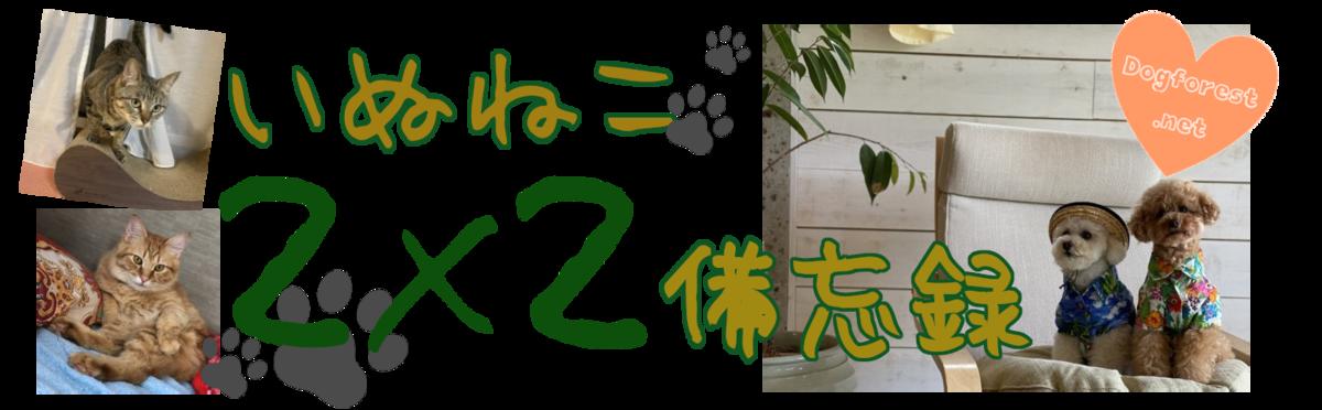 f:id:dogforest:20200615125822p:plain