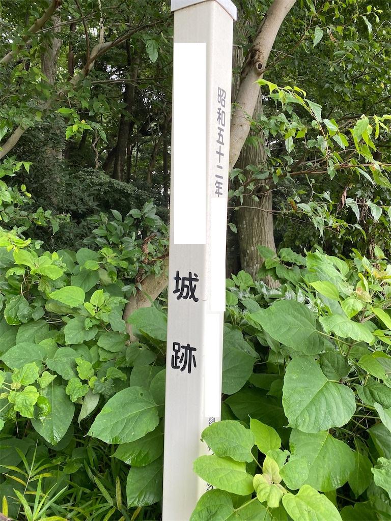 f:id:dogforest:20200724172120j:plain