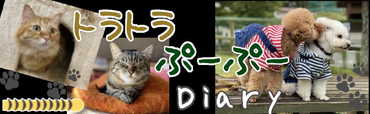 f:id:dogforest:20210225210202p:plain