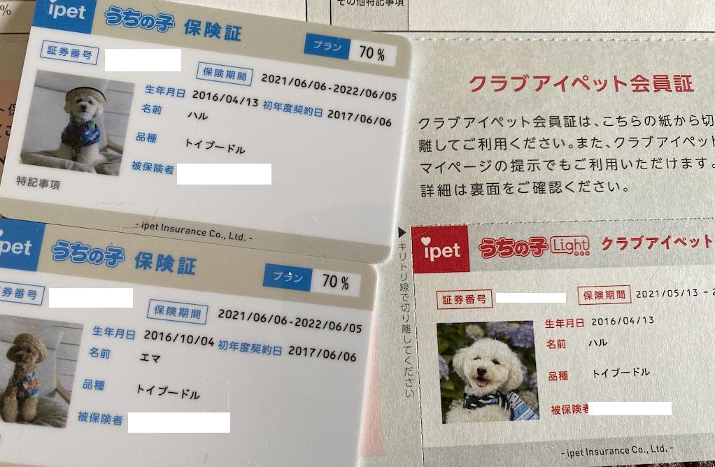f:id:dogforest:20210530201748p:plain
