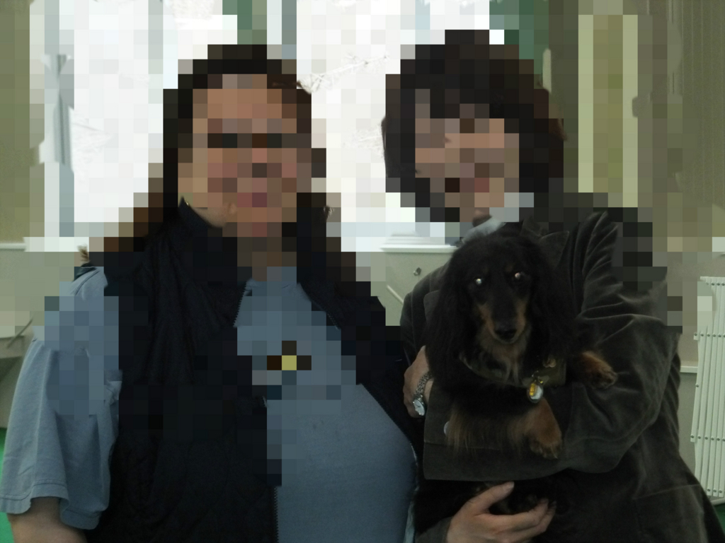 f:id:dogpalette40:20180228193024j:plain