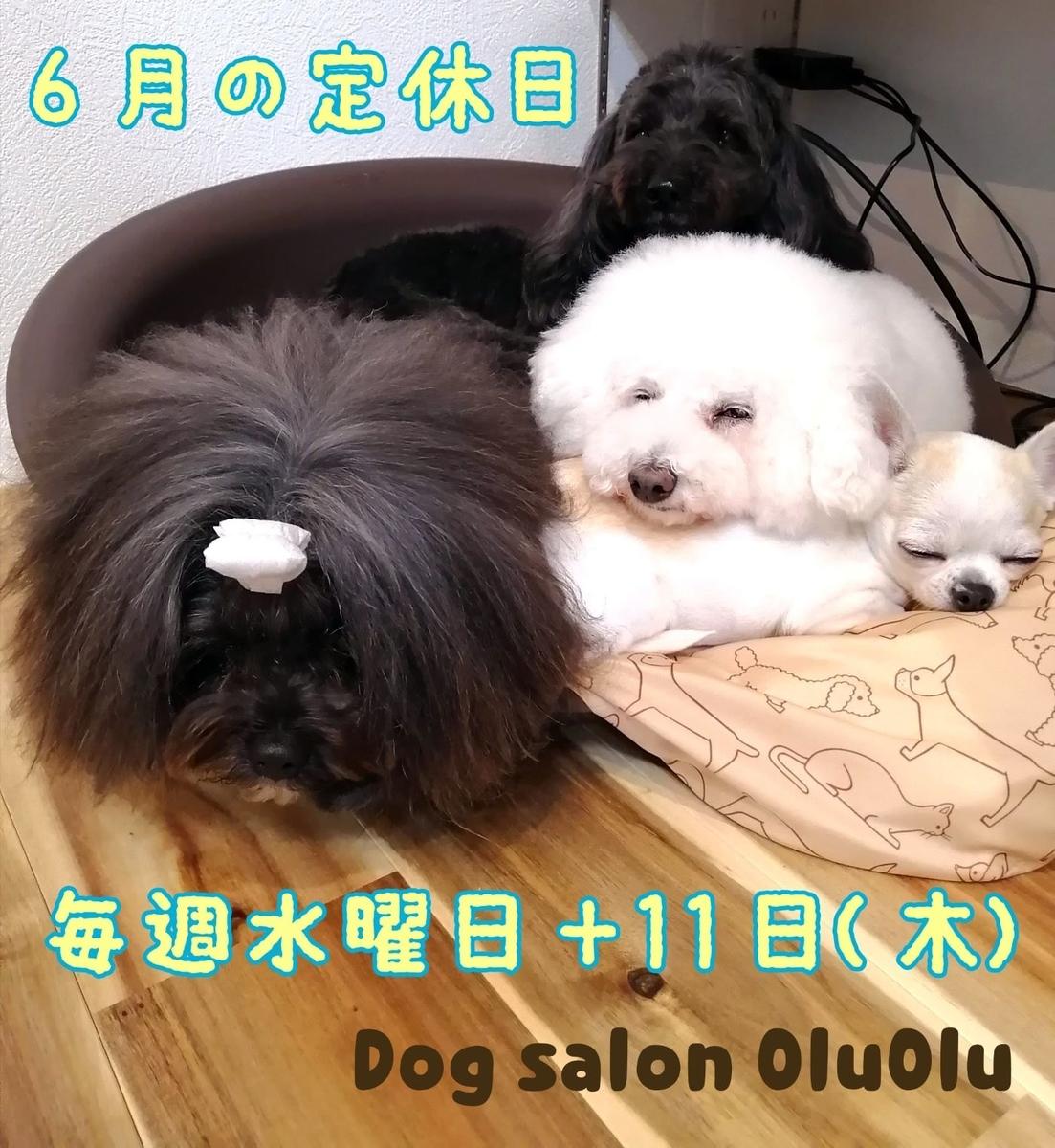 f:id:dogsalon-oluolu:20200526141055j:plain