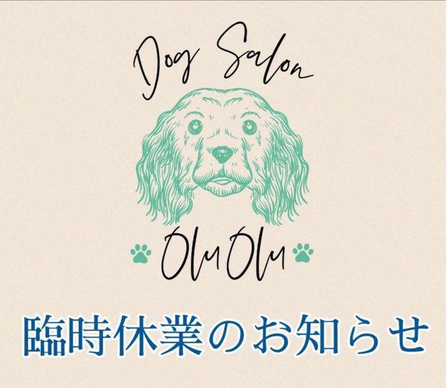 f:id:dogsalon-oluolu:20210408122214j:plain