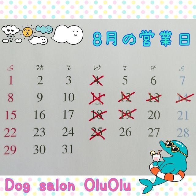 f:id:dogsalon-oluolu:20210716163327j:plain