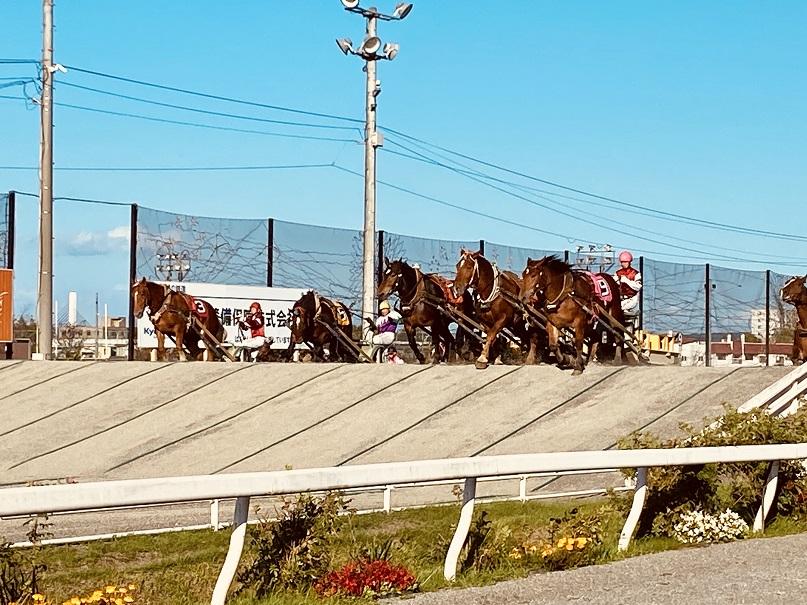 帯広ばんえい競馬レース