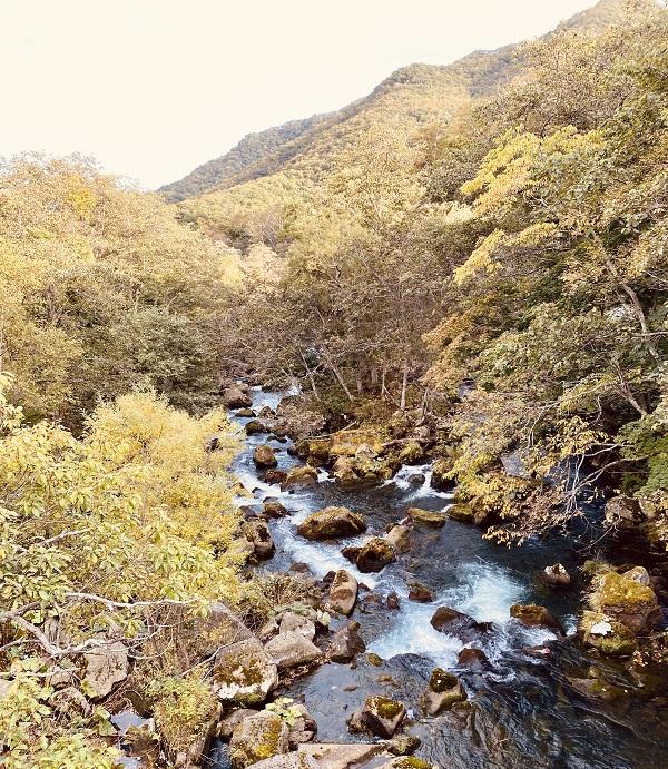 「熊の湯」はこの川の対岸