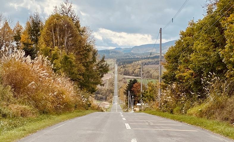 上富良野「ジェットコースターの道」