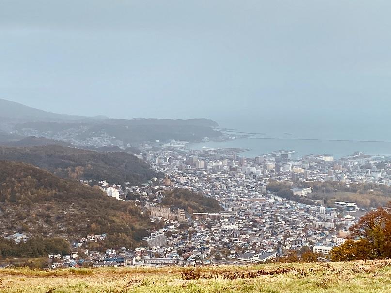 天狗山からの小樽の景色。雨だよ。