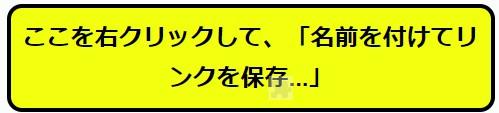 f:id:dokiwaku_everyday:20201025143835j:plain