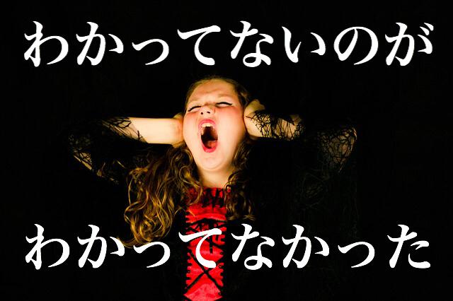 f:id:dokodemobakaaruki:20170125002833j:plain