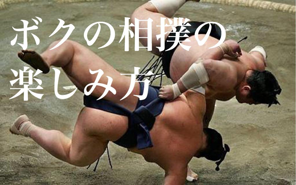 f:id:dokodemobakaaruki:20170201192525j:plain