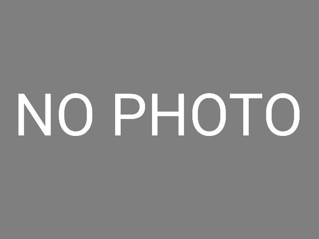 f:id:dokudamiyoshiko:20190228130556j:image